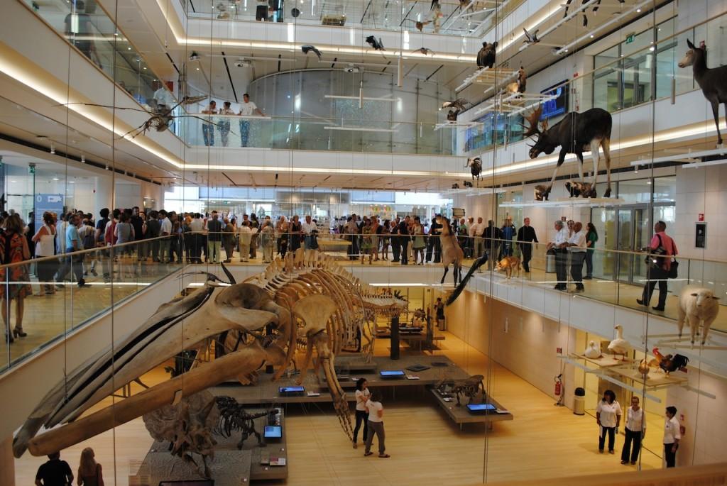 Inaugurazione-del-MUSE-1-allestimento-interno-foto-Albarello-copia