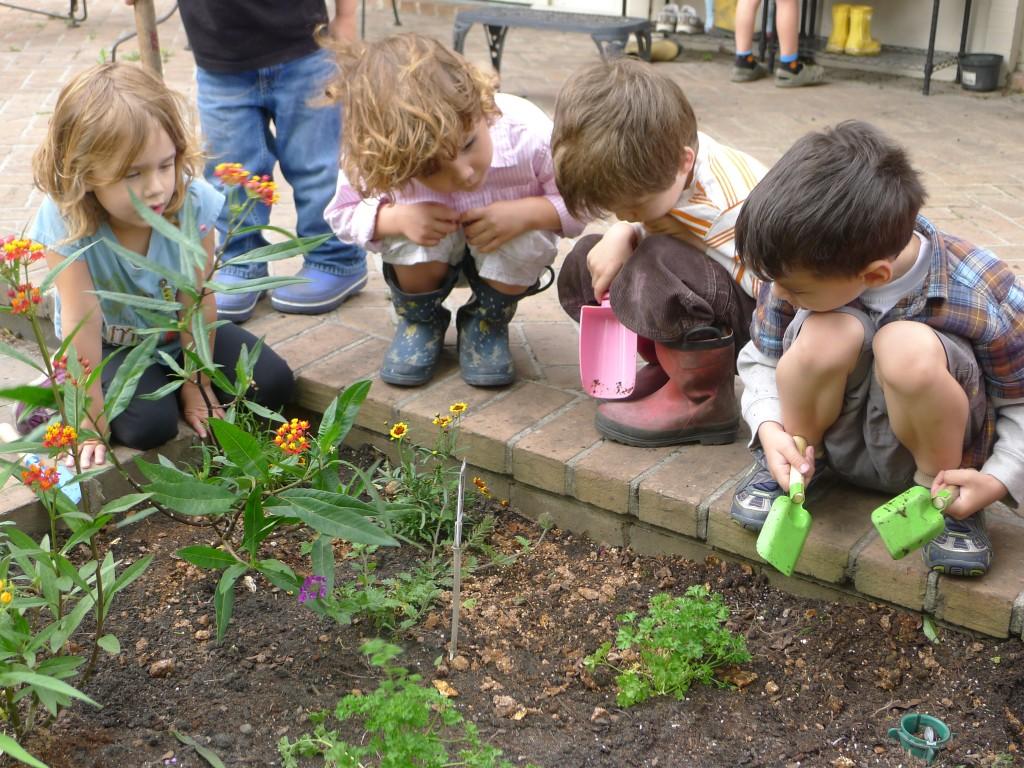 gradinaritul la copii