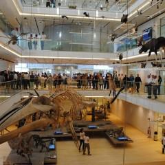 Cele mai verzi muzee din lume