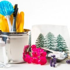 Detoxificarea locuinței cu produse naturale